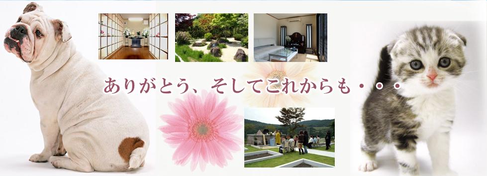 犬や猫などペットの火葬、納骨、葬儀は、仙台ペット霊園にご相談ください。