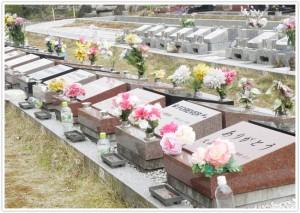 noukotu-image2